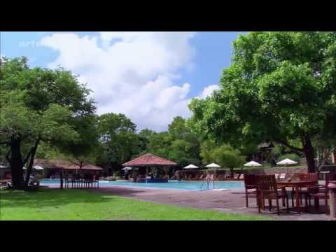 Sri Lanka (Ceylon) - Die smaragdgrüne Insel - Doku-Reihe - Die neuen Paradiese - arte HD