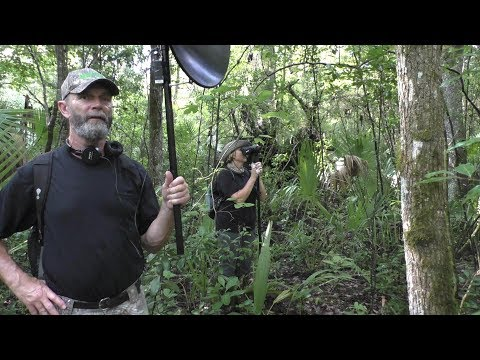 WATCH an Amazing Display of BIGFOOT ACTIVITY.