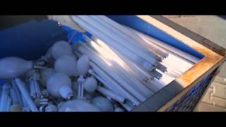 Altlampen richtig sammeln: Rungenpalette