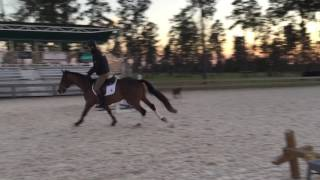 Tura Lura And WFP in Training For Stable View HT 2017