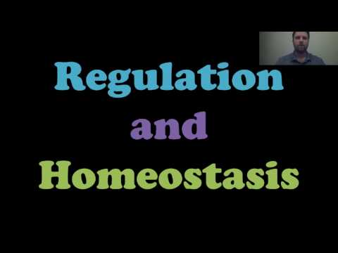 Regulation and Homeostasis