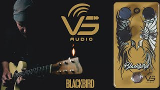 Demos in the Dark // VS Audio Blackbird Overdrive // Guitar Pedal Demo