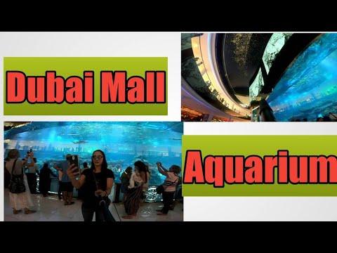 Dubai travel Vlog  ,Dubai Aquarium footage Shot by GOPRO hero 6