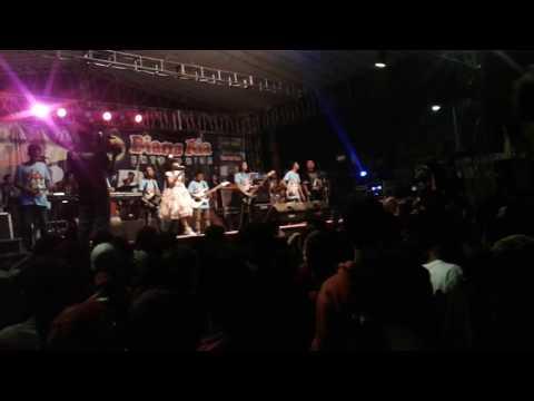 Nadin santoso new pallapa live semarang fair