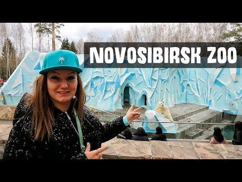 Novosibirsk Zoo, Russia