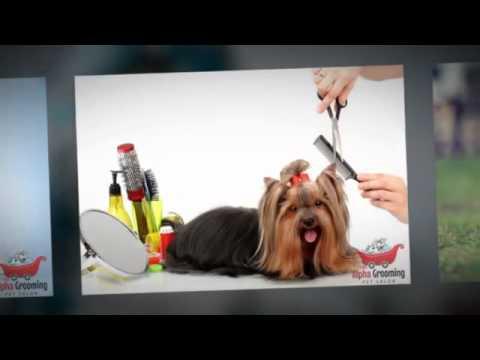 Mobile Pet Grooming in Hillsborough - (650) 271-4282