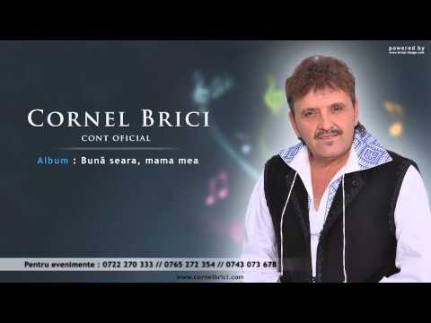 Cornel Brici - Cu mustata mincinoasa (new Version HIT)
