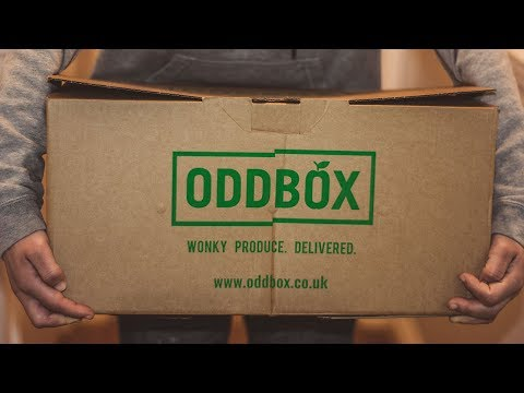 Oddbox Unpacking - Wonky Produce Delivered