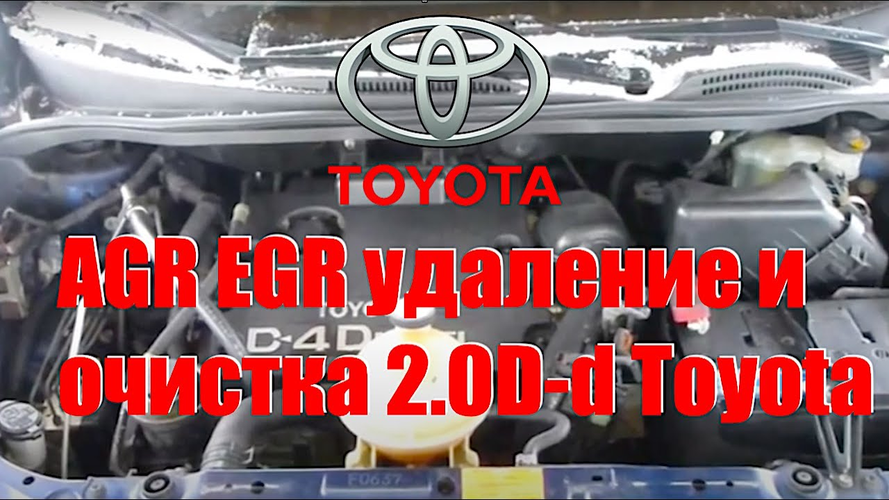 Agr Egr System Remove Valve Port Cleaning Valvoline 2 0d