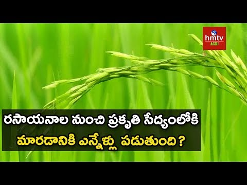 How to Convert from Chemical Farming to Natural Farming ?   hmtv Agri