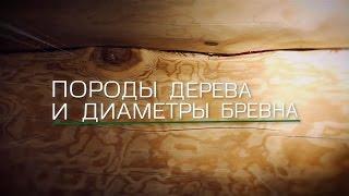видео Производство рубленых деревянных домов и срубов домов