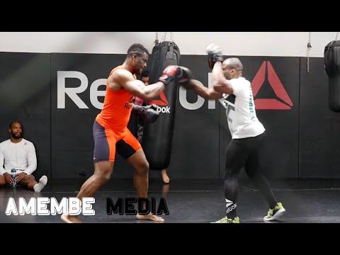 MMA Factory, Physical preparation (2/2) - Elite Training