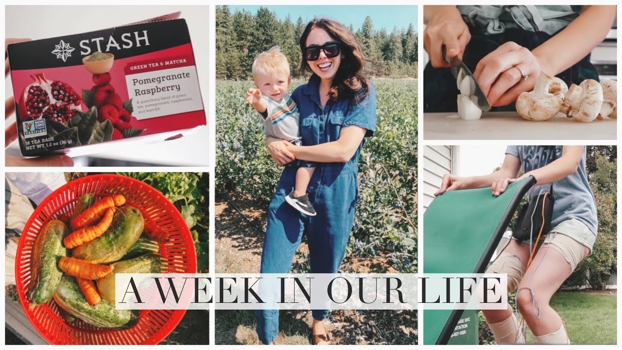 A Week In Our New Hometown!
