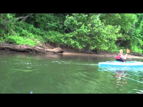 My Chattanooga Summer Adventure Day 1 Part 1 Kayaking
