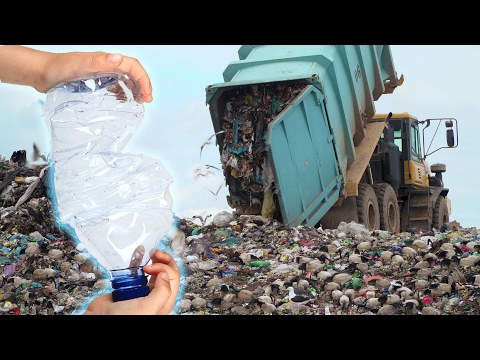 You Might Recycle Your Water Bottles. Doesn't Mean It Happens