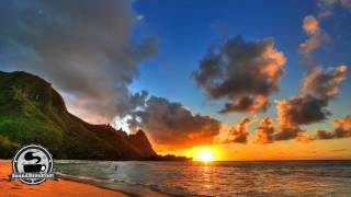 reggae ziggy marley beach in hawaii