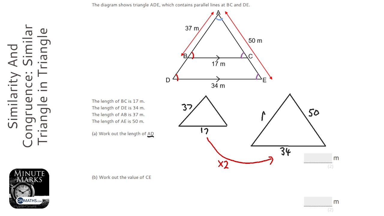 Similarity And Congruence Similar Triangle In Triangle