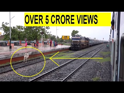 Thumbnail: Mighty Aravali Express Getting Cowed Down. Honking & All !!!