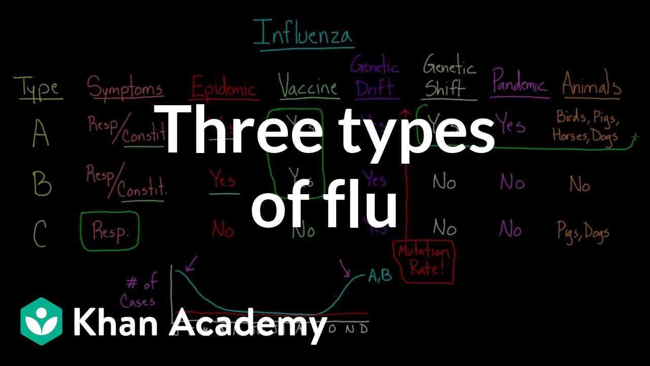 Three types of flu (video) | Influenza | Khan Academy