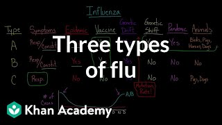 Three types of flu | Infectious diseases | Health & Medicine | Khan Academy