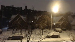 Blizzard 2016 Live - Queens NYC January 23rd, 2016