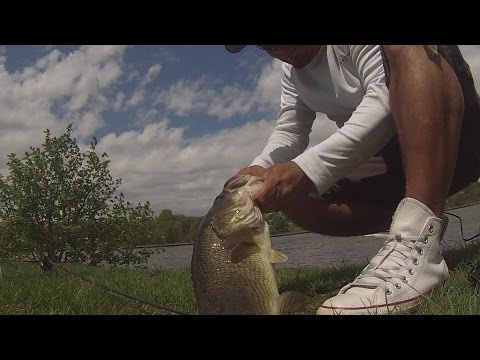 Big Bass Fishing Congers Lake Part 2 The Revenge Of Bass Chaser