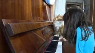 Шла кошака по роялю