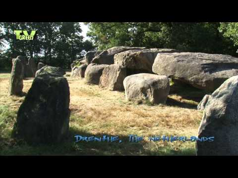 Hunebed D50 - Noord-Sleen - Megalith Tomb -  Drenthe, The Netherlands