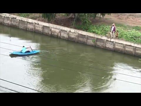 Children Cheer as Student Rescues Kitty || ViralHog
