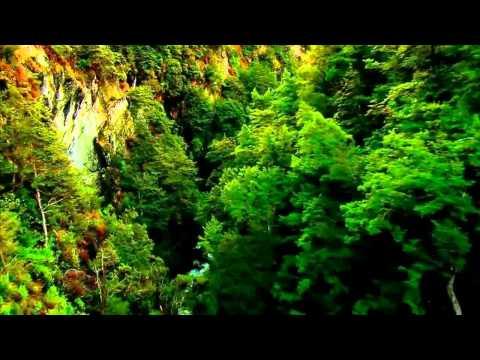 Andy Blueman - Florescence (Live Emotional Intro Mix)