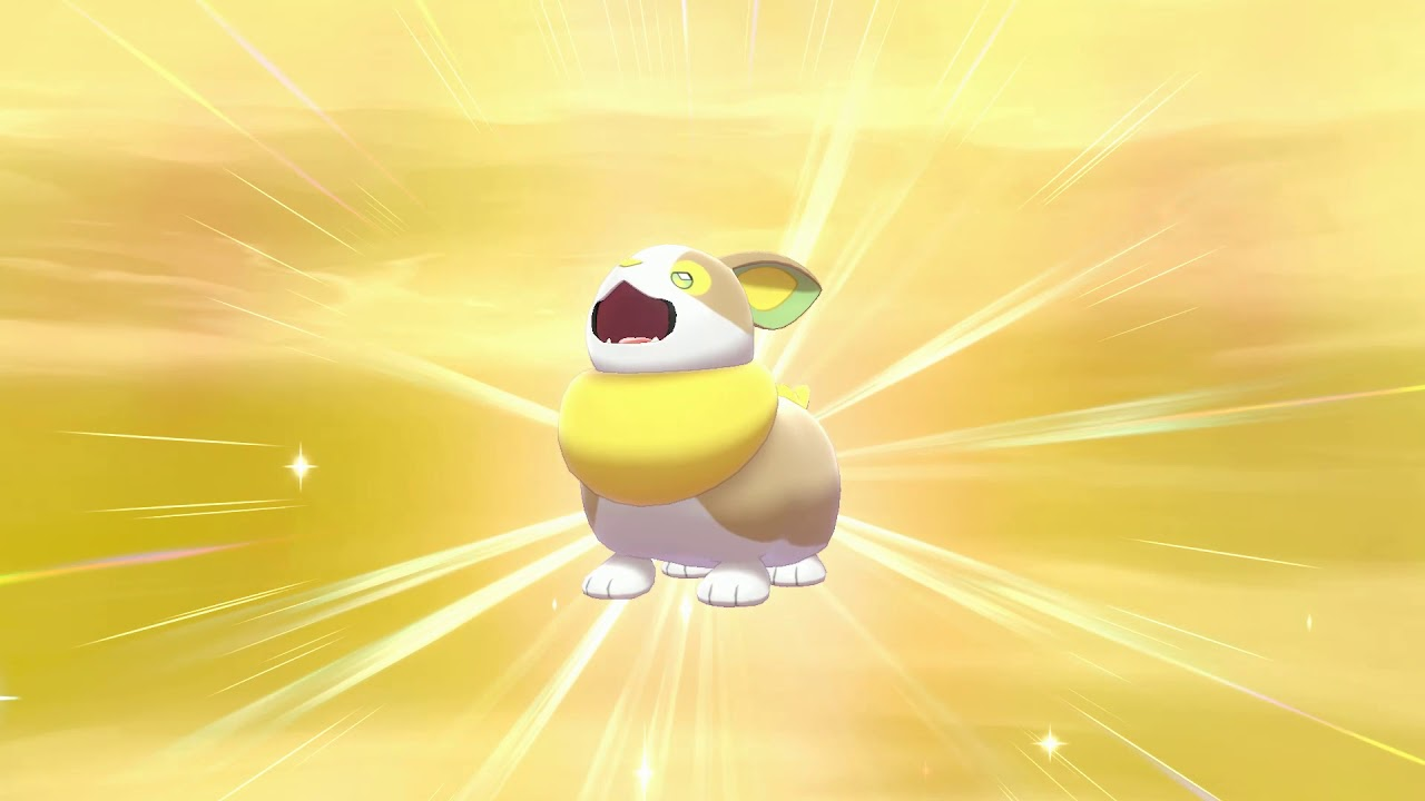 Shiny Yamper After 900 Eggs Youtube Lift your spirits with funny jokes, trending memes, entertaining gifs, inspiring stories, viral videos, and so much. shiny yamper after 900 eggs youtube