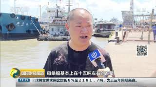 [国际财经报道]东黄海开捕梭子蟹条虾 最严休渔制度后渔业资源增加明显| CCTV财经