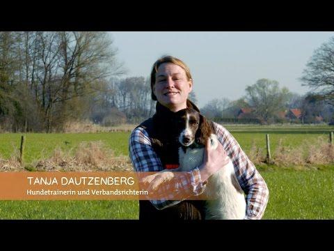 Basisausbildung für den brauchbaren Jagdhund: 'Sitz und Platz!'