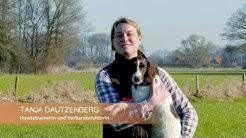 """Basisausbildung für den brauchbaren Jagdhund: """"Sitz und Platz!"""""""