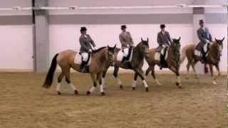 Kinsky Pferde Quadrille Erlebniswelt Pferd 2012 Landshut