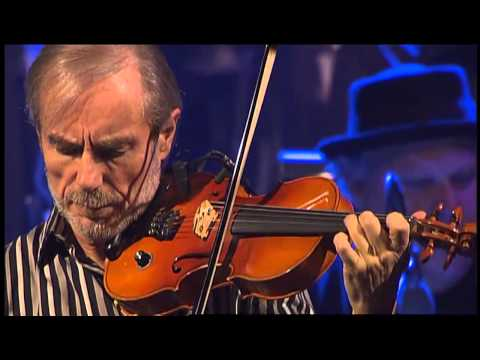 """The Struggle of the Turtle to the Sea"" - hr-Bigband & Jean Luc Ponty"