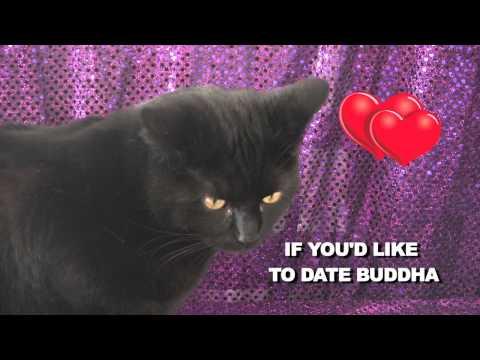 internet dating funny pics
