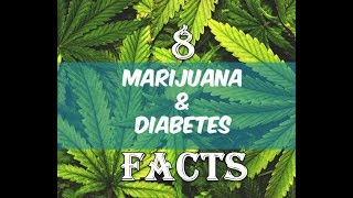 8 Facts About Cannabis and Diabetes You Should Know