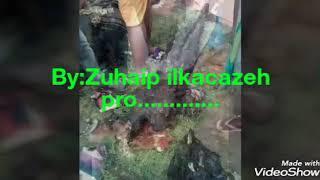 Black day 14 Oct 2017 somalia