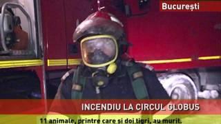 Incendiu devastator la Circul Globus