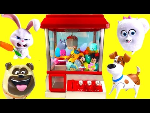 Thumbnail: Secret Life of Pets Play CLAW MACHINE Game with Toy Surprises! Blind Bags and Fashems!
