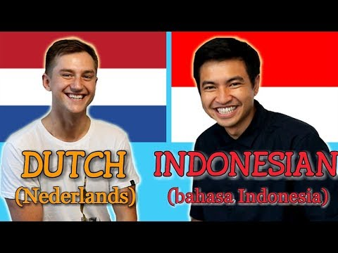 Similarities Between Dutch and Indonesian