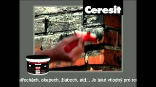 Ceresit AQUABLOCK® - Univerzální opravný silikon