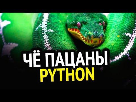 PYTHON | 3 книги, которые сделают из тебя мастера