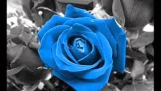 Чудо природы & Голубая роза.wmv