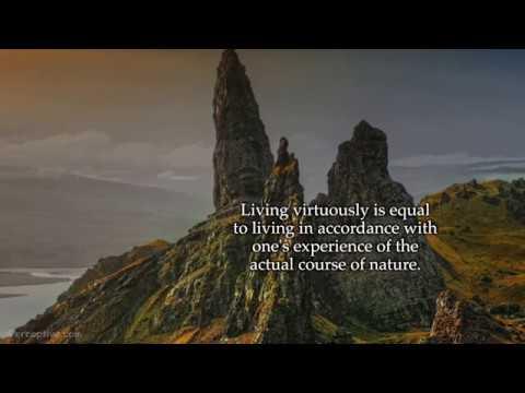 Stoicism Quotes: