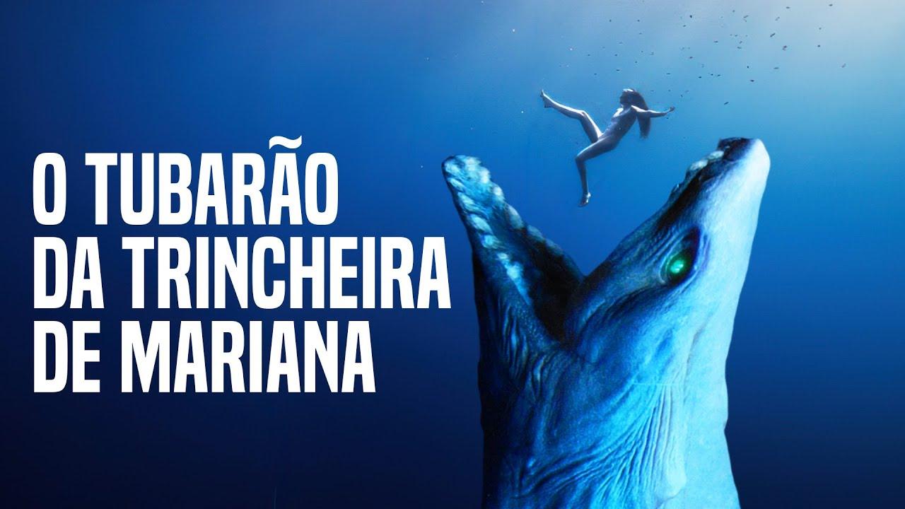 O Tubarão Mais Assustador Que o Megalodon da Trincheira de Mariana