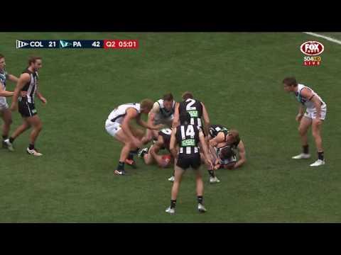 Round 14 AFL - Collingwood V Port Adelaide Highlights