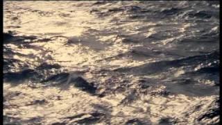 Noir Ocean Trailer