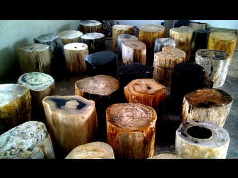 Petrified Wood Prices